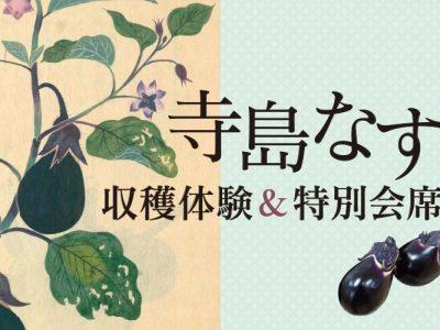 【開催済】8/4(日)イベント「寺島なす収穫体験&特別会席」